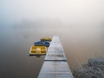Foggy morning in November